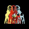 Lil Wayne Vizine Artwork