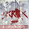 skrillex new song music track leaked speedrun facebook