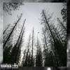 Diverse - D.O.B. (feat. OG Wax) [Prod. Ricky $panish]