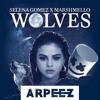 Selena Gomez and Marshmellow - Wolves [ARPEEZ REMIX]