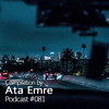Podcast #081