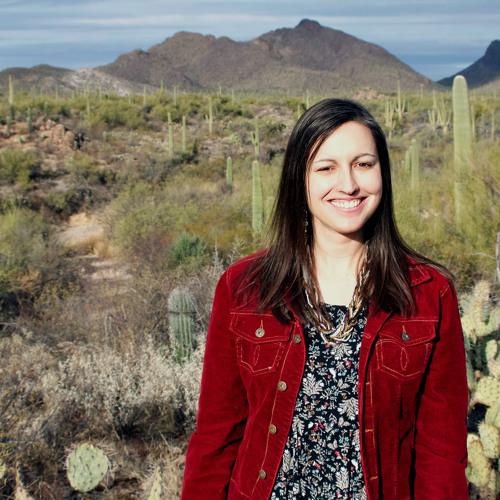 Poet Julie Swarstad Johnson in Gettysburg - Big Blend Radio Interview