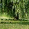 Ben's Song - Willow Quartet Musical