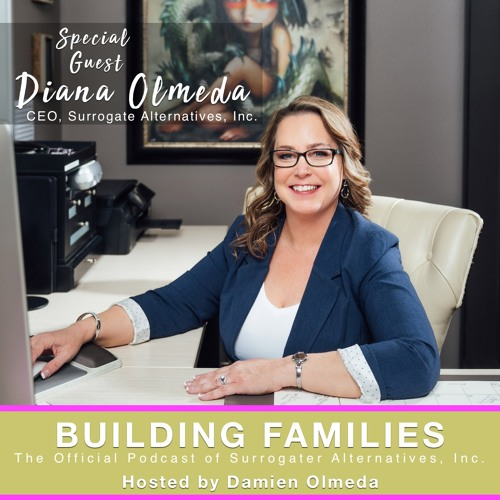 EP #1 : SAI CEO, Diana Olmeda, discusses her 20 yrs in the surrogacy industry