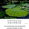 Learn Chinese Poems |《琵琶行》