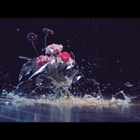 Zedd – The Middle (ft. Maren Morris & Grey (Gabriel Mello Remix)