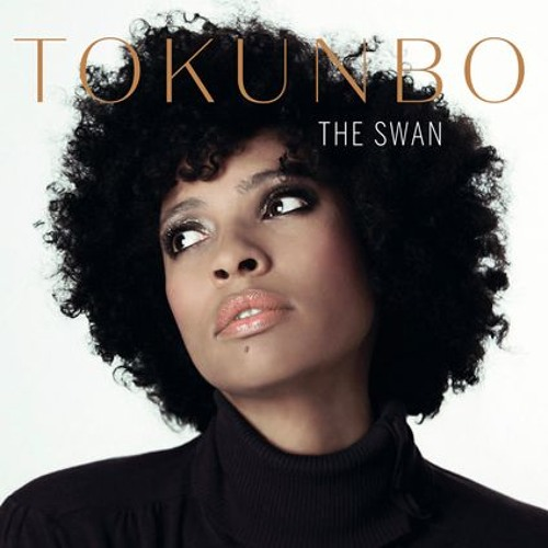 TOKUNBO Album Preview The Swan