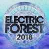 Electric Forest Weekend Two Hype Mix