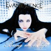Evanescence - Bring Me To Life (Acapella) FREE DOWNLOAD