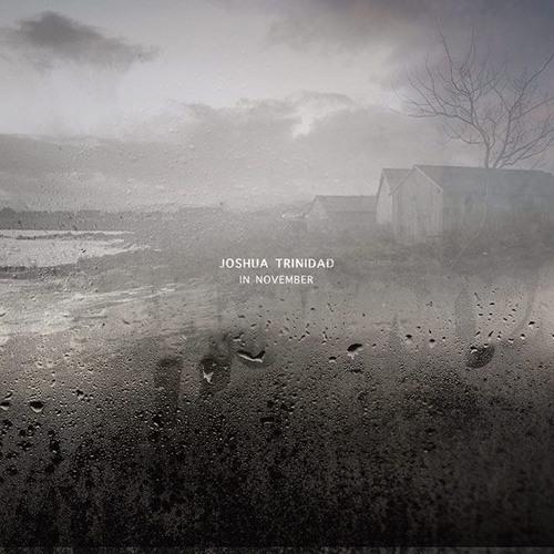 The Joshua Trinidad Trio - from 'In November'