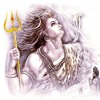 Devon Ke Dev Mahadev title song.mp3