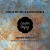 PREMIERE: Circle of Life, Carlo Whale - Another World (Alex Heide Remix) [Lauter Unfug]