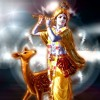 Krishna fute