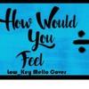 Ed Sheeran - How Would You Feel (Low_Key Mello Cover)