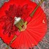 Padmavati  Ghoomar Song  Deepika Padukone  Shahid Kapoor  Ranveer Singh  Shreya  Swaroop Khan