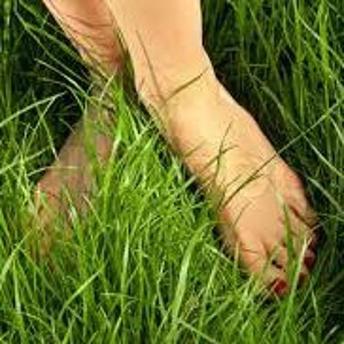 Shuffling in the grass