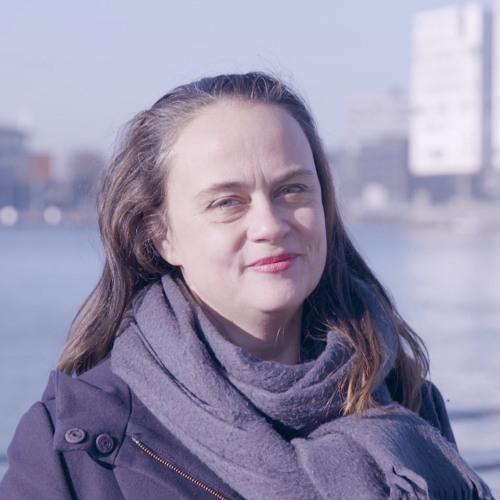 Bria, Pieterse, Meindertsma, Van Berkel en Jansen - Digitale democratie
