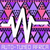 Auto-Tuned Africa, Vol. 2 : Afrobeats & Other Afro-Popsicles