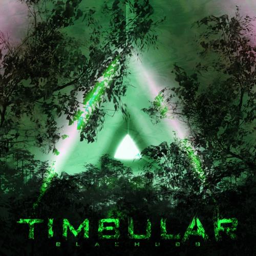 Timbular