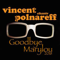 """"""" Goodbye Marylou """" Michel POLNAREFF - Cover Vincent Prudhon"""
