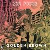 BSN Posse - Golden Brown (Greazus RMX) mp3