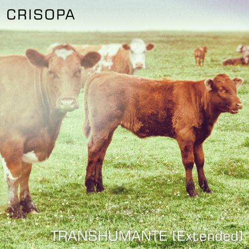Crisopa - Expectorant Ballad