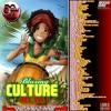 DJ DOTCOM_PRESENTS_BLAZING CULTURE_MIX_VOL.1 (PLATINUM SERIES)
