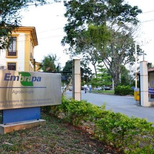 Após questionar o uso de agrotóxicos, pesquisador é demitido da Embrapa