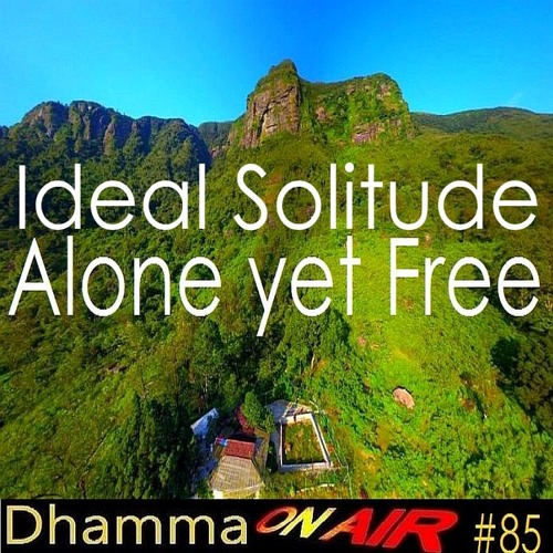 DoA_#85: Ideal Solitude = Alone yet Free