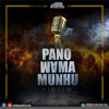 Enzo Ishall - Chiita kwacho (RAW)  (PanoMama Munhu riddim produced by chillspot recordz)