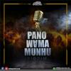 Nutty O  - Boom shelele (PanoMama Munhu riddim produced by chillspot recordz)