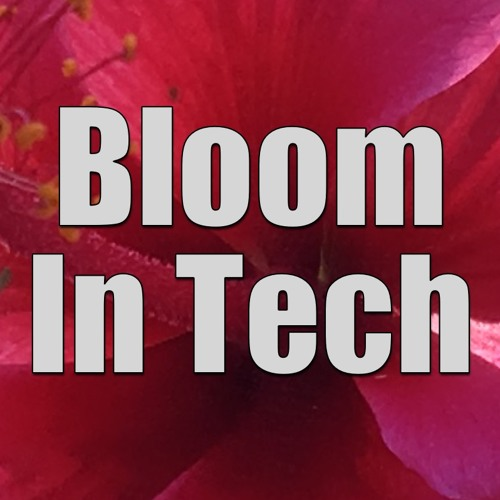 Bloom In Tech With Allison Stern