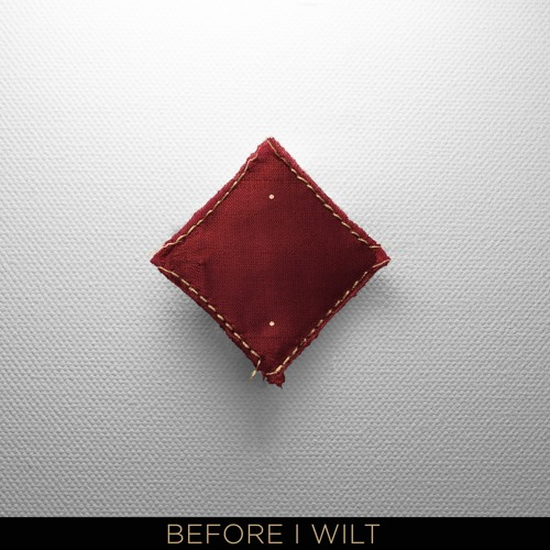 Before I Wilt
