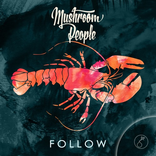 Mushroom People - Follow (Original Mix)