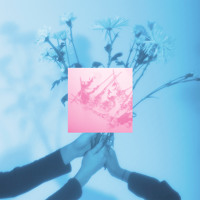INSTUPENDO - Fleur (Ft. Teen Daze)
