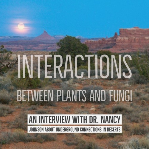 Interactions between plants and fungi