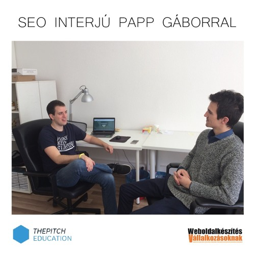 Interjú Papp Gábor SEO szakértővel - thepitch.hu