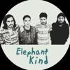 Something better - elephant kind (ukulele cover)