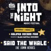 Tyler from Said the Whale chats about Groundswell's Into the Night festival