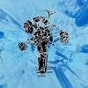 Supermarket Flowers - Ed Sheeran // Cover by Phyllis Lim
