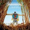 Rudimental - These Days feat. Jess Glynne, Macklemore & Dan Caplen (Mario Vee Remix)