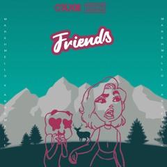 Marshmello & Anne-Marie - FRIENDS (CryJaxx & Marin Hoxha Remix)