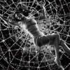 Lovedegreez - Web ft. Dora Jarkowski