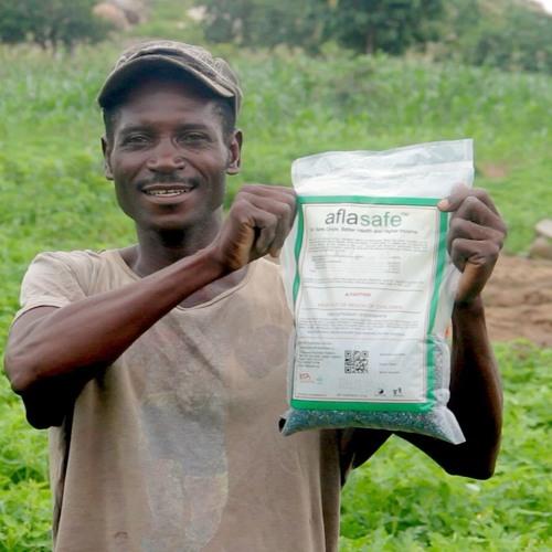 NIGERIA: Why use Aflasafe? The benefits (Hausa and Yoruba Pidgin) 1:00
