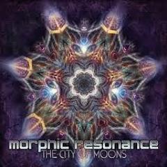 Morphic Resonance - Psychedelic Hell