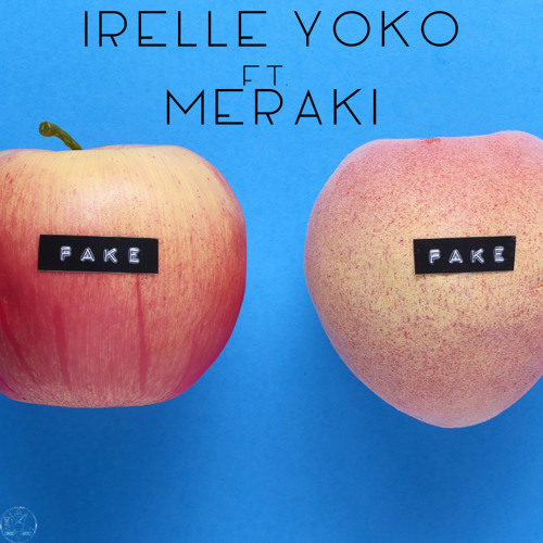 Fake (feat. Meraki)