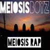 Meiosis Rap