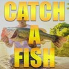 Outlaw- Catch A Fish