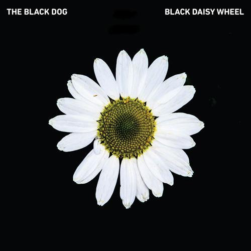 [DustCD055] The Black Dog - Black Daisy Wheel