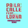 Mexican Institute of Sound Feat. Lorna - Pa La Calle (Federico Scavo Remix)